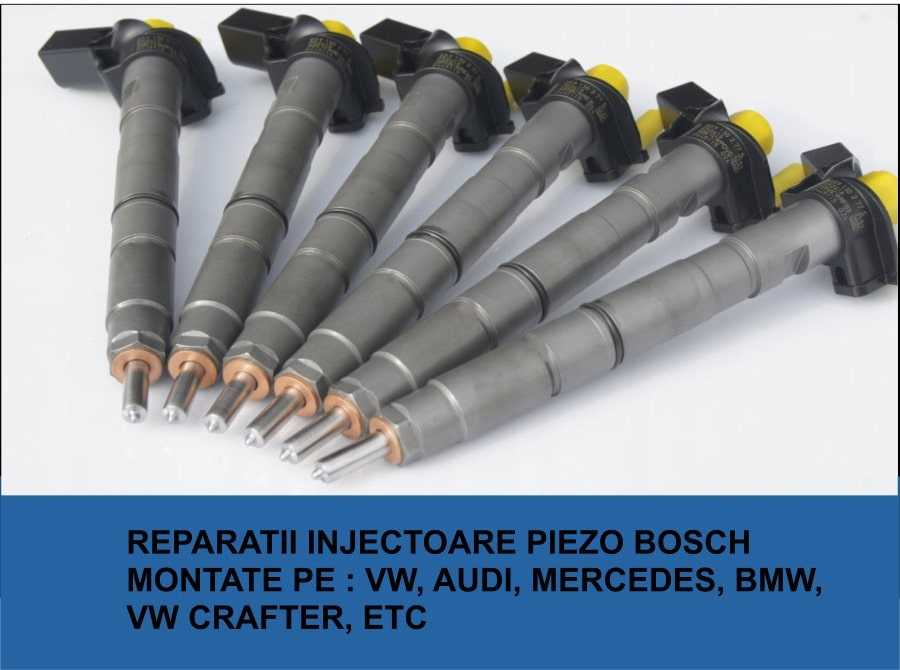 firme reconditionat injectoare piezo bosch